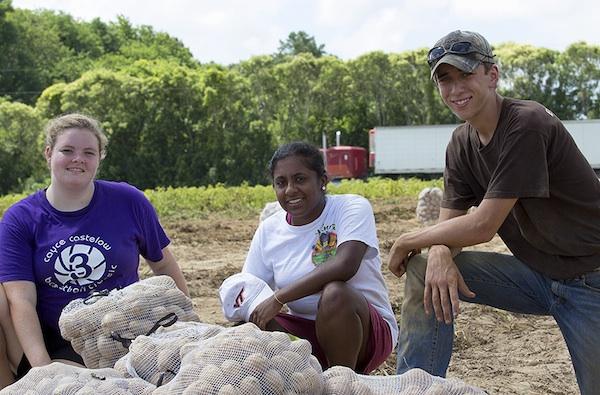 Three gleaners: Emily Taylor, Minaka Gunesekera, Tim Blanton