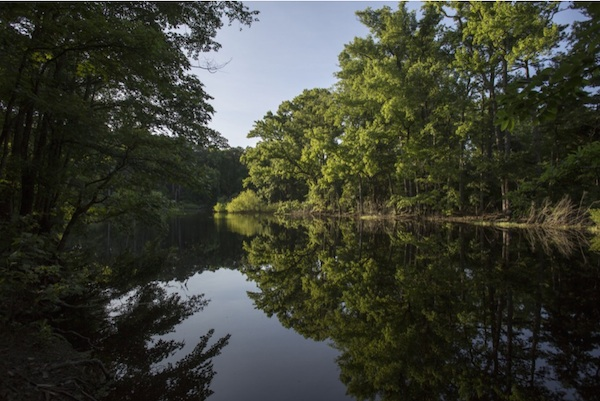 Washington Post photographer Jay Westcott captured this image of Custis Pond in Savage Neck Dunes -- near Cape Charles but missed by most tourists and quite a few residents.