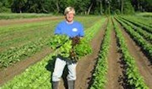 Mattawoman Creek Farms in Eastville is Community Supported Agriculture.